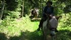 Wanderritt 2012 574