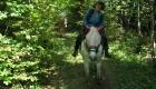 Wanderritt 2012 581