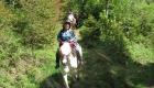 Wanderritt 2012 583